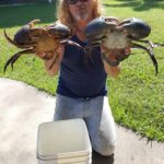 Catch Mudcrabs QLD